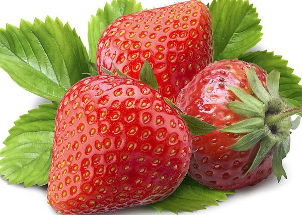 青岛曹村草莓专业合作社位于风景秀丽的崂山西麓夏庄街道.
